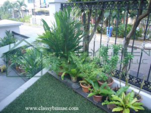 gardening maintenance services dubai