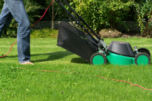 grass maintenance company in dubai